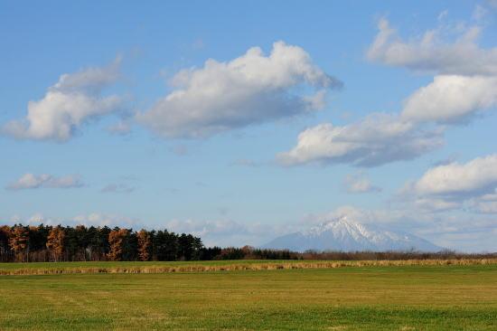 初冬の牧草地