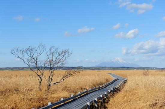 サロベツ湿原~初冬