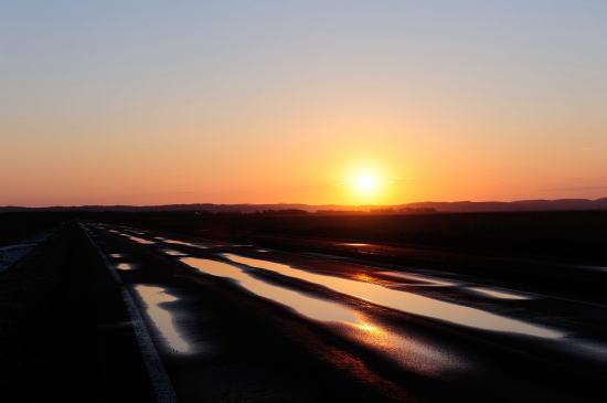 道道444号線の朝