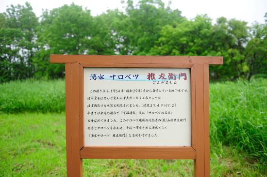 湧水 サロベツ 権左衛門 (下沼湧水)
