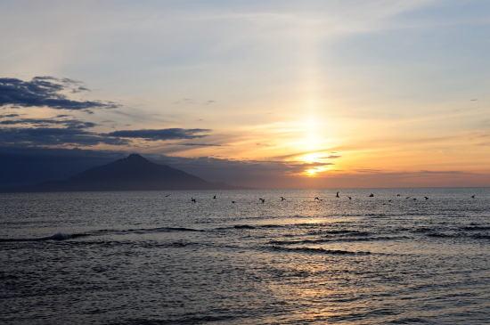 ゴメと稚咲内海岸の夕日