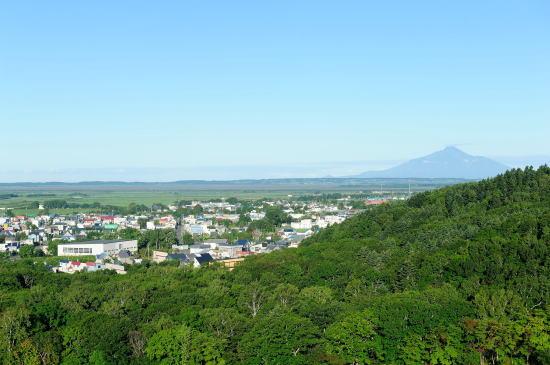 豊富町市街地と利尻富士