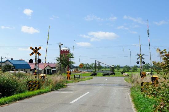 牧場の前の踏切
