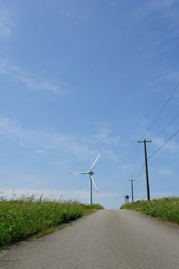 風車に続く道