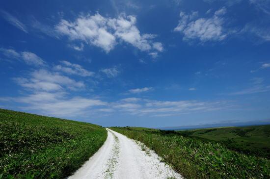 青空へ続くような白い道