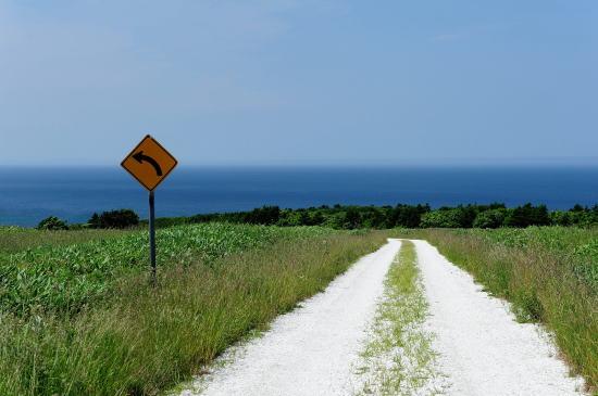 白い道が続きます