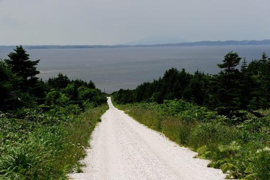 海へ続く白い道