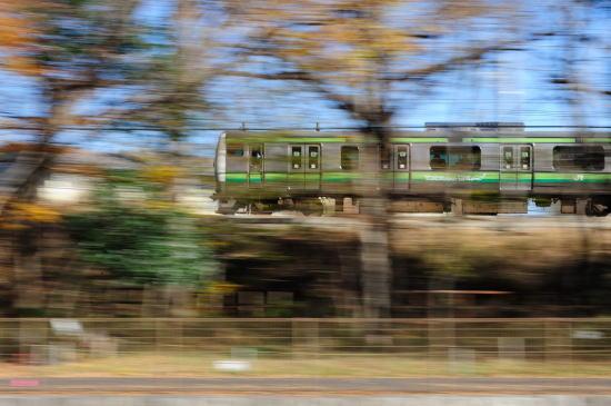 JR横浜線~晩秋