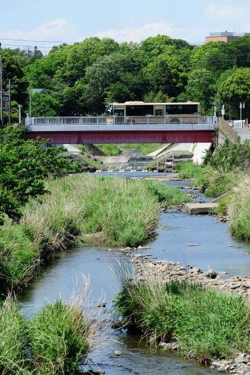 境川を渡る神奈中パス