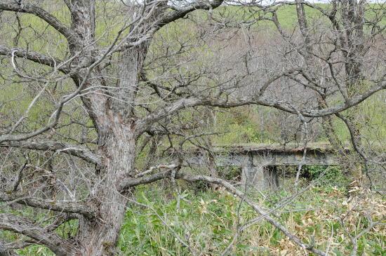 鉄道橋の跡