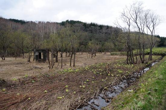 原野にポツンと残された建物