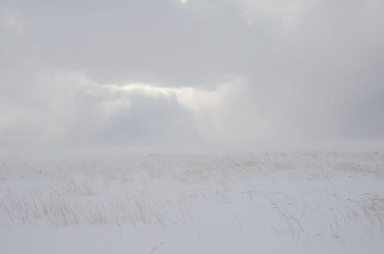 雲間光~地吹雪