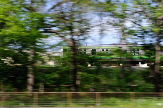 JR横浜線~新緑