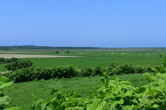 振老あたりから発電風車を望む