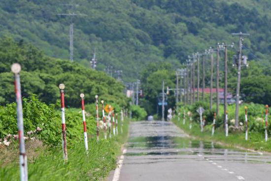 陽炎の立つ農道