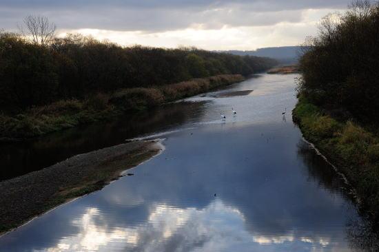 空を映す川
