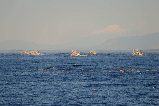 北方領土国後島爺爺岳とイカ釣り船