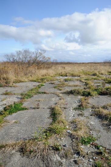 旧牧の内飛行場