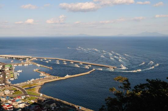 羅臼国後展望塔から羅臼港を望む