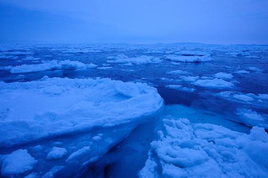夜明け前の流氷