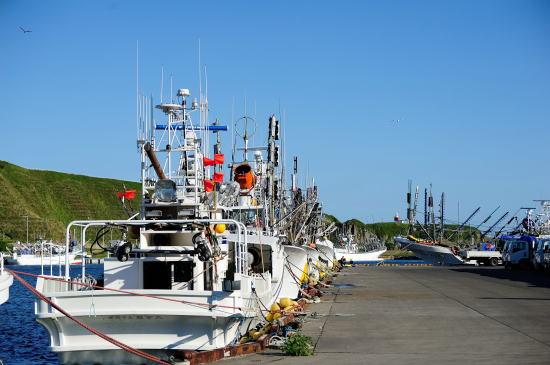 花咲港のさんま船