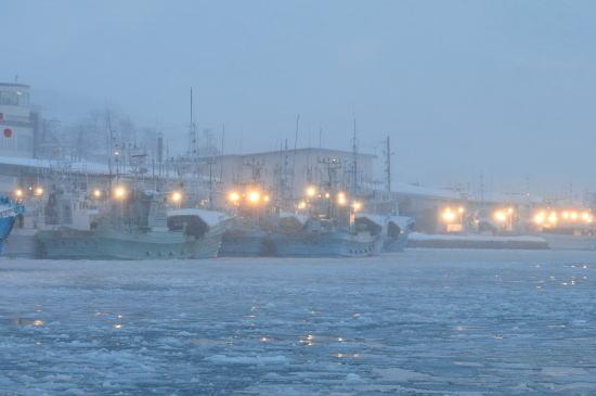 朝の羅臼港