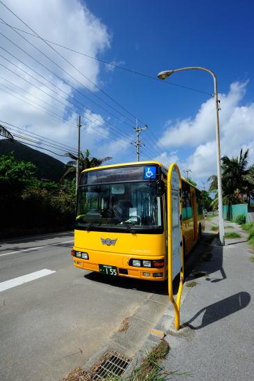 東運輸 「ヤシ林入口」バス停