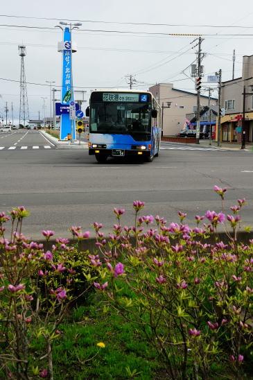 根室交通 花咲線