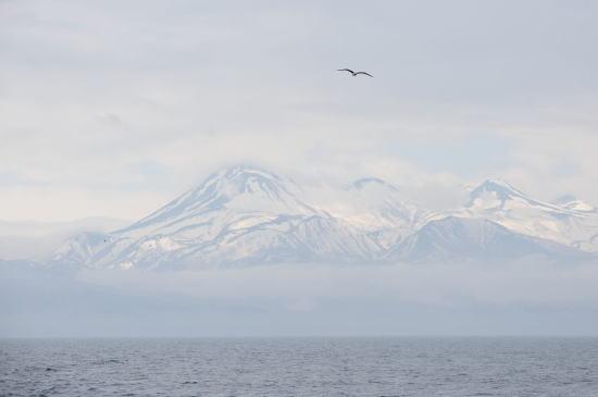 霧晴れる知床の山