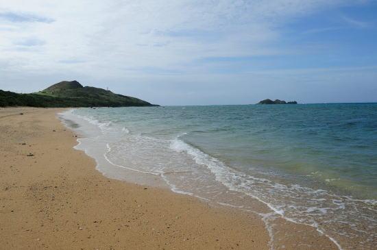 平野の海岸