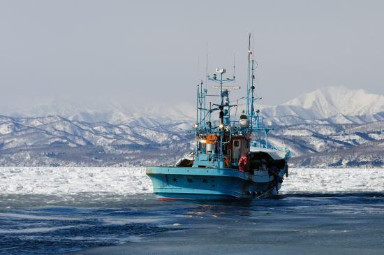 流氷帯をゆく漁船
