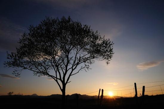 原野に落ちる夕日