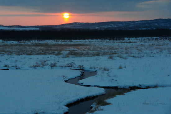 冬の湿原の朝