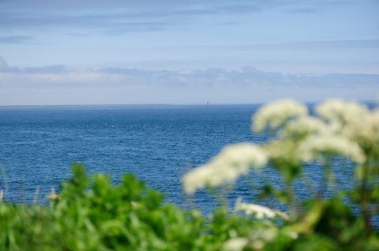 水晶島と貝殻島灯台 (北方領土)