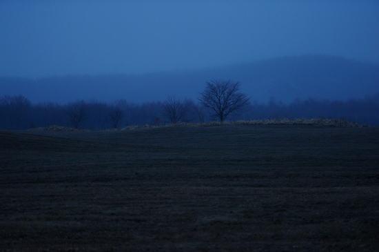 原野の夕暮れ