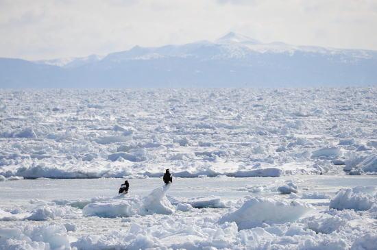 流氷と北方領土国後島