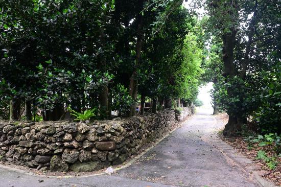 鳩間島を歩く