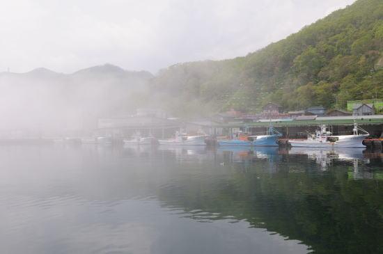 霧の羅臼港