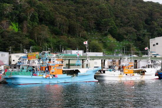 安全操業の船