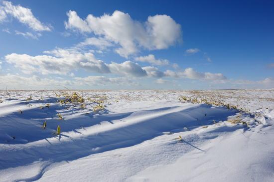 落石岬のゲート付近の雪原