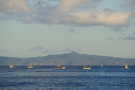 北方領土国後島とイカ釣り船
