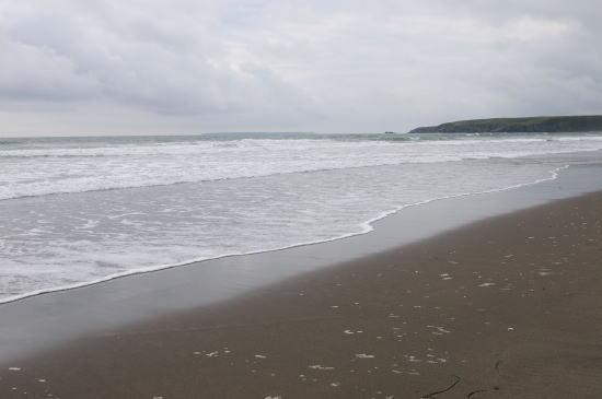 桂木の海岸