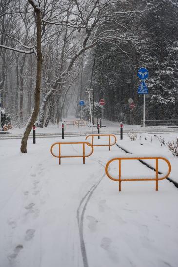 森の交差点~雪の日