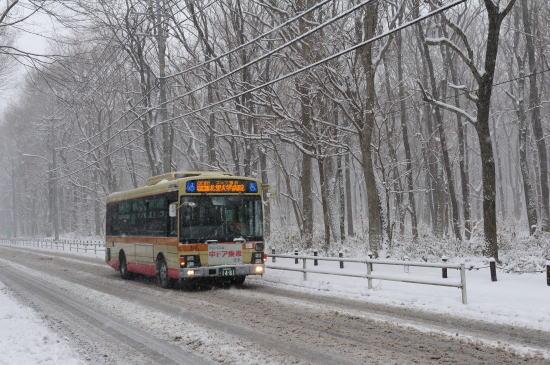 神奈中バス、雪降る日