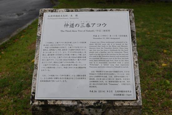 「仲道の三番アコウ」解説板