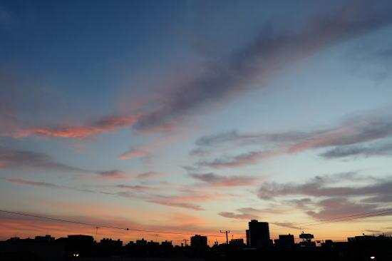 朝の彩 ~秋~