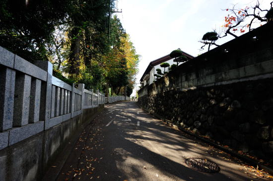 長嶋神社の横の道