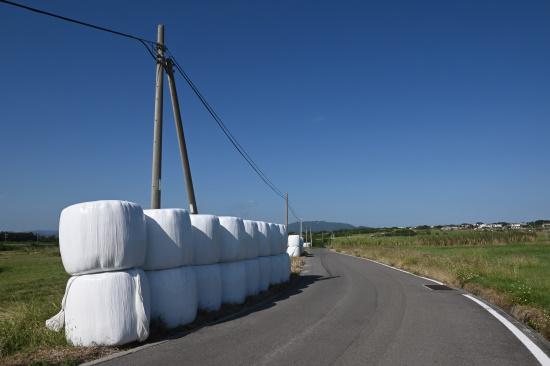 牧草ロールのある農道
