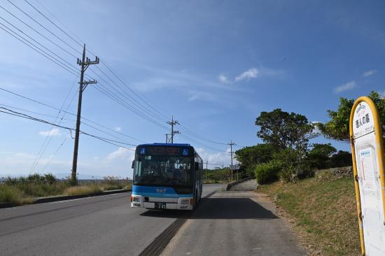 東運輸「唐人の墓」バス停