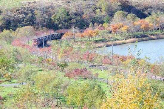 秋めく春採湖畔を行く